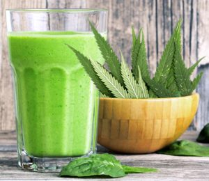 cannabis-smoothie-feature